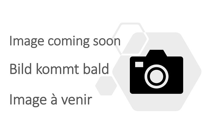 Heavy duty folding van ramp unfolded with support bar